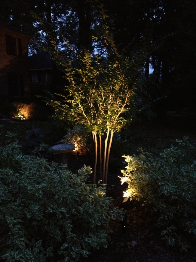 Low-voltage Landscape Lighting